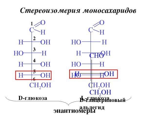 Стереоизомерия моносахаридов 6 5 4 3 2 1 D-глицериновый альдегид D-глюкоза L-глюкоза энантиомеры
