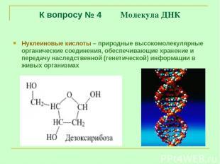 К вопросу № 4 Молекула ДНК Нуклеиновые кислоты – природные высокомолекулярные ор