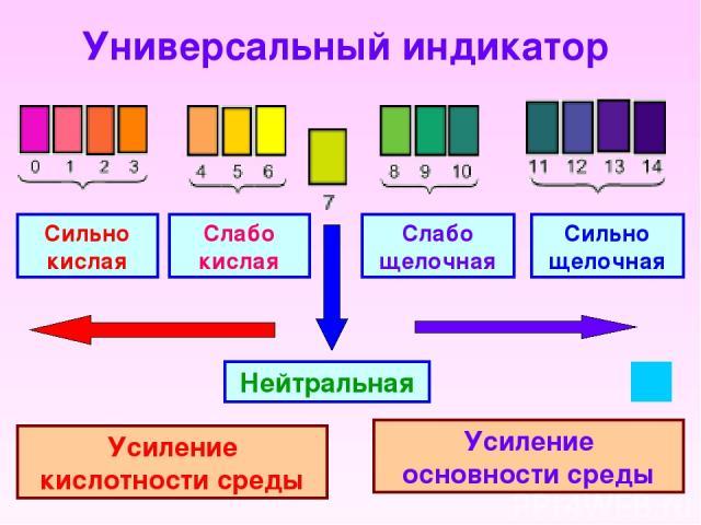 Универсальный индикатор Сильно кислая Слабо кислая Слабо щелочная Сильно щелочная Нейтральная Усиление кислотности среды Усиление основности среды