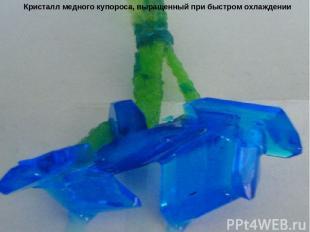 Кристалл медного купороса, выращенный при быстром охлаждении