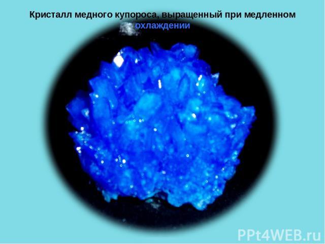 Кристалл медного купороса, выращенный при медленном охлаждении