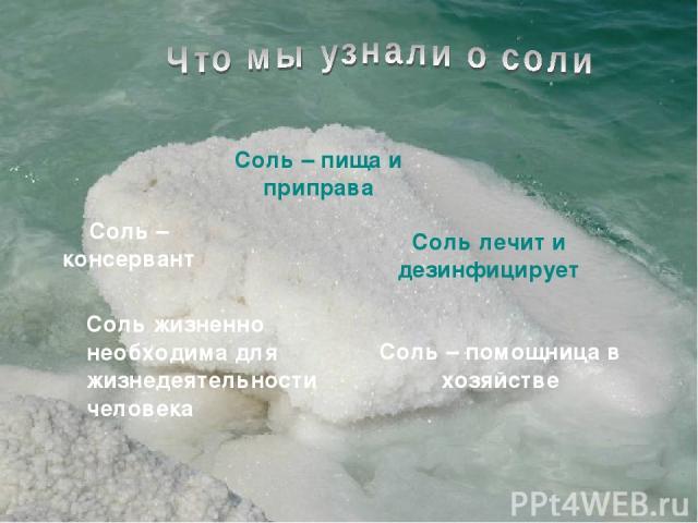 Соль – пища и приправа Соль – консервант Соль лечит и дезинфицирует Соль – помощница в хозяйстве Соль жизненно необходима для жизнедеятельности человека
