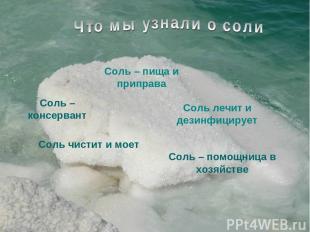 Соль – пища и приправа Соль – консервант Соль лечит и дезинфицирует Соль – помощ
