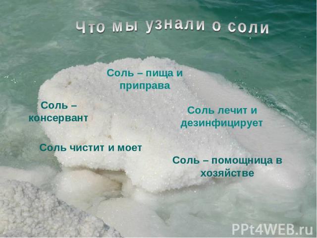 Соль – пища и приправа Соль – консервант Соль лечит и дезинфицирует Соль – помощница в хозяйстве Соль чистит и моет