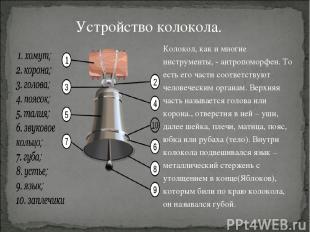 Колокол, как и многие инструменты, - антропоморфен. То есть его части соответств