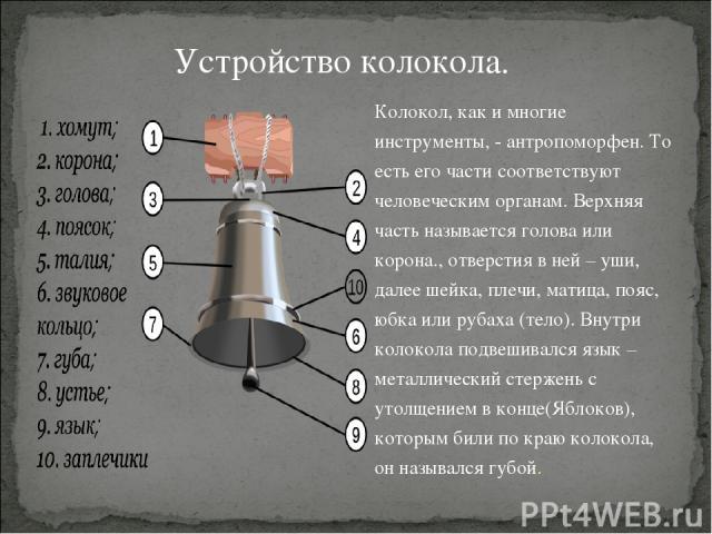 Колокол, как и многие инструменты, - антропоморфен. То есть его части соответствуют человеческим органам. Верхняя часть называется голова или корона., отверстия в ней – уши, далее шейка, плечи, матица, пояс, юбка или рубаха (тело). Внутри колокола п…