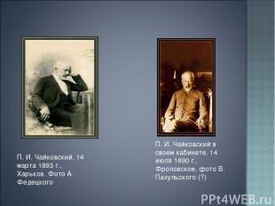 П. И. Чайковский. 14 марта 1893 г., Харьков. Фото А. Федецкого П. И. Чайковский