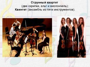 Струнный квартет (две скрипки, альт и виолончель); Квинтет (ансамбль из пяти ин