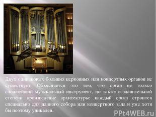 Двух одинаковых больших церковных или концертных органов не существует. Объясняе