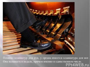 Помимо клавиатур для рук, у органа имеется клавиатура для ног. Она называется пе
