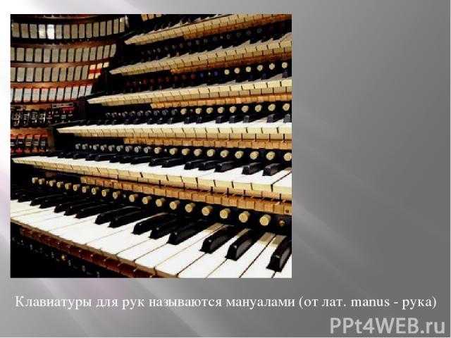 Клавиатуры для рук называются мануалами (от лат. manus - рука)