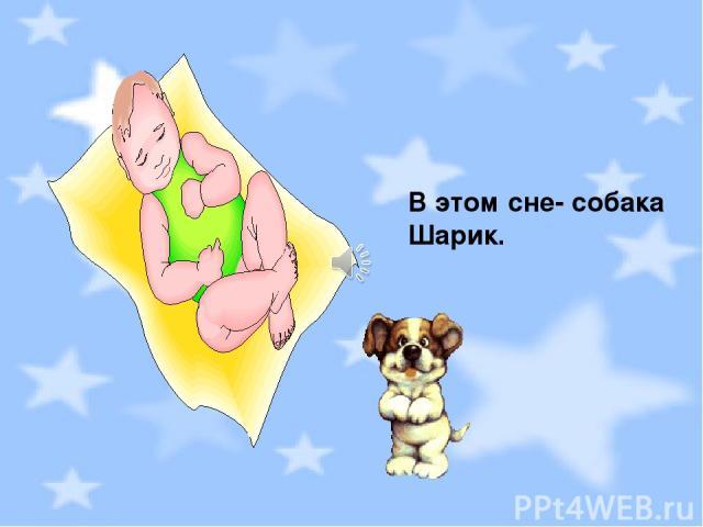 В этом сне- собака Шарик.