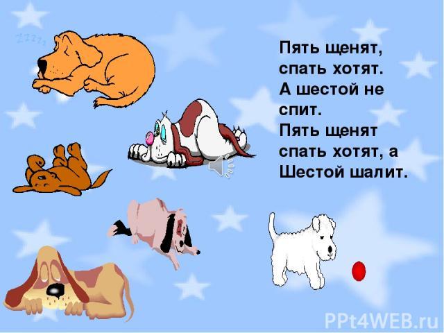 Пять щенят, спать хотят. А шестой не спит. Пять щенят спать хотят, а Шестой шалит.