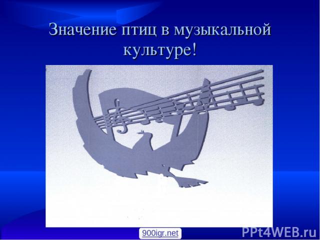 Значение птиц в музыкальной культуре! 900igr.net