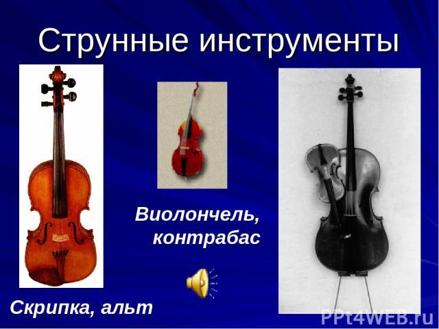 Струнные инструменты Скрипка, альт Виолончель, контрабас
