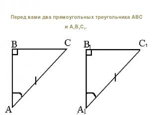 Перед вами два прямоугольных треугольника АВС и А1В1С1.