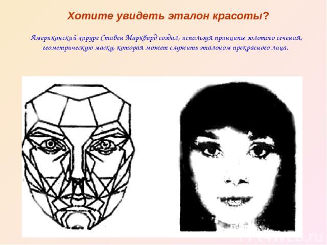 Хотите увидеть эталон красоты? Американский хирург Стивен Марквард создал, используя принципы золотого сечения, геометрическую маску, которая может служить эталоном прекрасного лица.