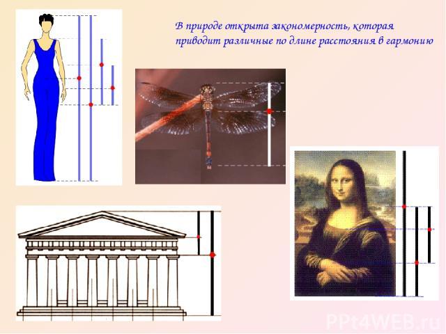 В природе открыта закономерность, которая приводит различные по длине расстояния в гармонию