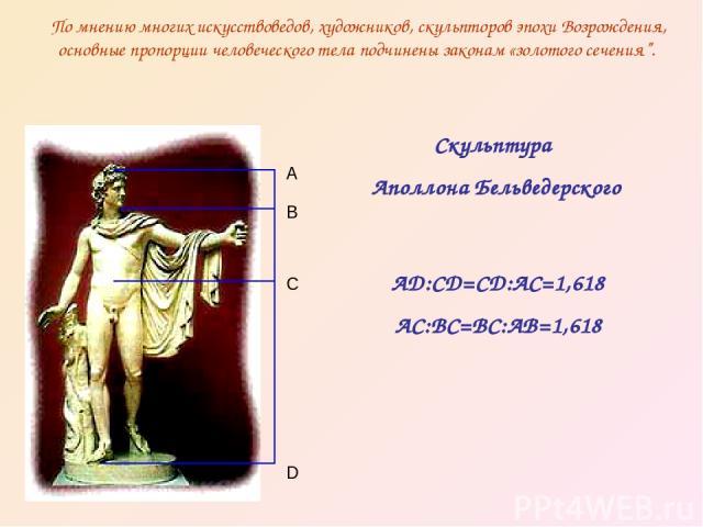 """По мнению многих искусствоведов, художников, скульпторов эпохи Возрождения, основные пропорции человеческого тела подчинены законам «золотого сечения"""". D C B A Скульптура Аполлона Бельведерского AD:CD=CD:AC=1,618 AC:BC=BC:AB=1,618"""