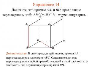 Докажите, что прямые AA1 и BD, проходящие через вершины куба ABCDA1B1C1D1, перпе