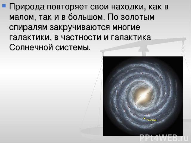 Природа повторяет свои находки, как в малом, так и в большом. По золотым спиралям закручиваются многие галактики, в частности и галактика Солнечной системы.
