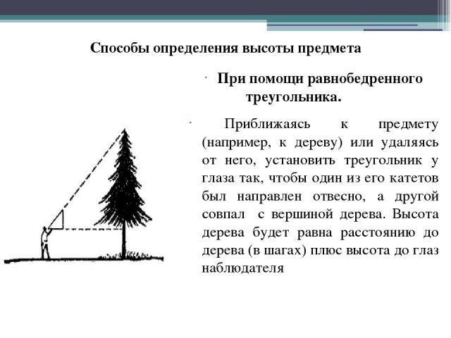 При помощи равнобедренного треугольника. Приближаясь к предмету (например, к дереву) или удаляясь от него, установить треугольник у глаза так, чтобы один из его катетов был направлен отвесно, а другой совпал с вершиной дерева. Высота дерева будет ра…