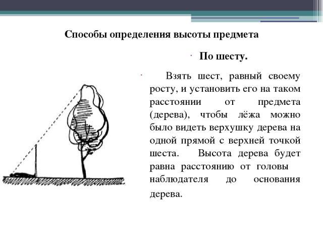 По шесту. Взять шест, равный своему росту, и установить его на таком расстоянии от предмета (дерева), чтобы лёжа можно было видеть верхушку дерева на одной прямой с верхней точкой шеста. Высота дерева будет равна расстоянию от головы наблюдателя до …