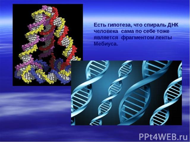 Есть гипотеза, что спираль ДНК человека сама по себе тоже является фрагментом ленты Мебиуса.
