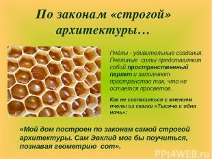 По законам «строгой» архитектуры… Пчёлы - удивительные создания. Пчелиные соты п