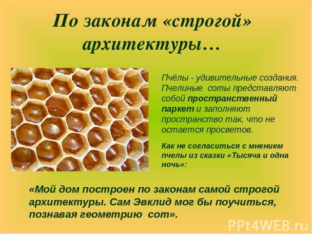 По законам «строгой» архитектуры… Пчёлы - удивительные создания. Пчелиные соты представляют собой пространственный паркет и заполняют пространство так, что не остается просветов. «Мой дом построен по законам самой строгой архитектуры. Сам Эвклид мог…