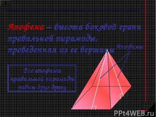 Апофема – высота боковой грани правильной пирамиды, проведенная из ее вершины Ап