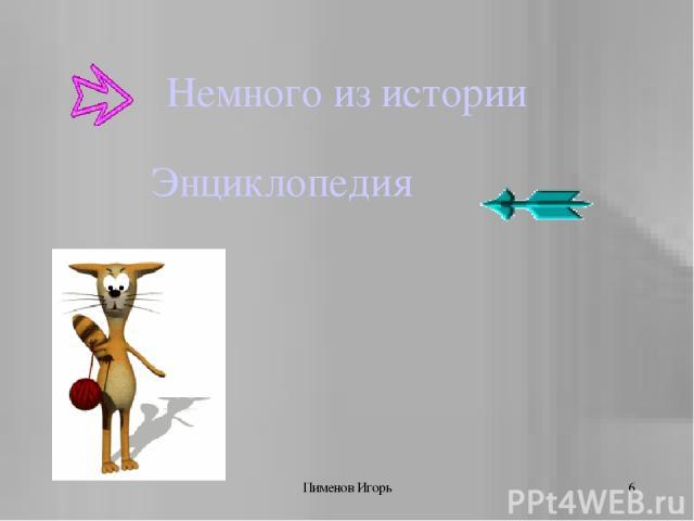 Пименов Игорь * Немного из истории Энциклопедия Пименов Игорь