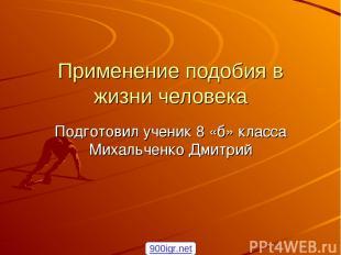 Применение подобия в жизни человека Подготовил ученик 8 «б» класса Михальченко Д