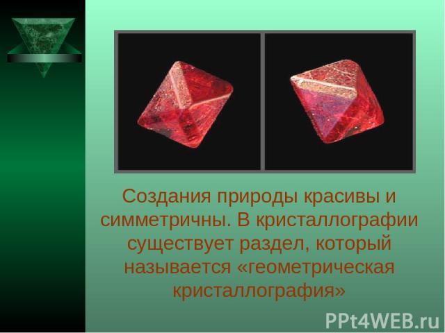 Создания природы красивы и симметричны. В кристаллографии существует раздел, который называется «геометрическая кристаллография»