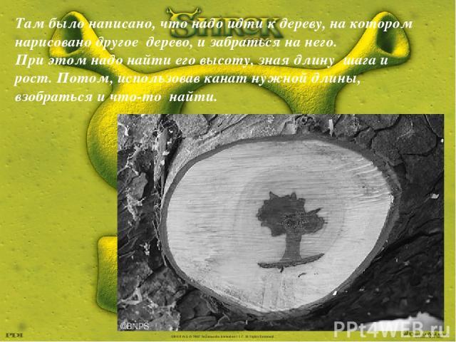 Там было написано, что надо идти к дереву, на котором нарисовано другое дерево, и забраться на него. При этом надо найти его высоту, зная длину шага и рост. Потом, использовав канат нужной длины, взобраться и что-то найти.