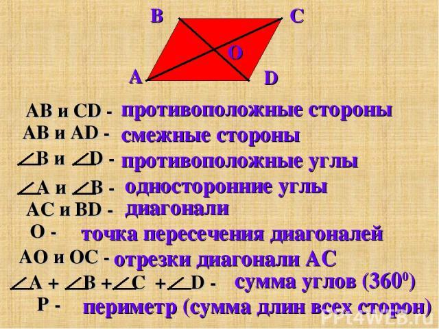 противоположные стороны смежные стороны противоположные углы односторонние углы диагонали точка пересечения диагоналей отрезки диагонали AC сумма углов (3600) периметр (сумма длин всех сторон)