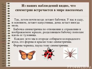 Из наших наблюдений видно, что симметрия встречается в мире насекомых Так, летом