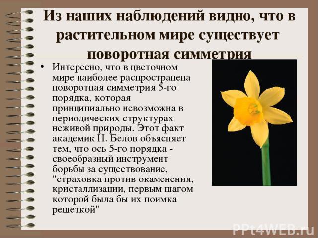 Из наших наблюдений видно, что в растительном мире существует поворотная симметрия Интересно, что в цветочном мире наиболее распространена поворотная симметрия 5-го порядка, которая принципиально невозможна в периодических структурах неживой природы…