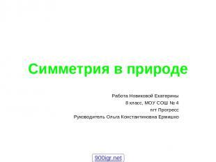 Симметрия в природе Работа Новиковой Екатерины 8 класс, МОУ СОШ № 4 пгт Прогресс