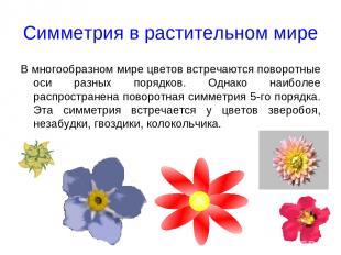 Симметрия в растительном мире В многообразном мире цветов встречаются поворотные