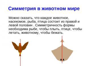 Симметрия в животном мире Можно сказать, что каждое животное, насекомое, рыба, п