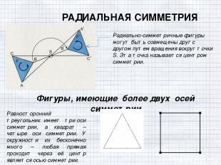 РАДИАЛЬНАЯ СИММЕТРИЯ Радиально-симметричные фигуры могут быть совмещены друг с д