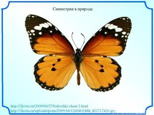Симметрия в природе http://2krota.ru/2009/06/27/babochki-chast-2.html http://2kr