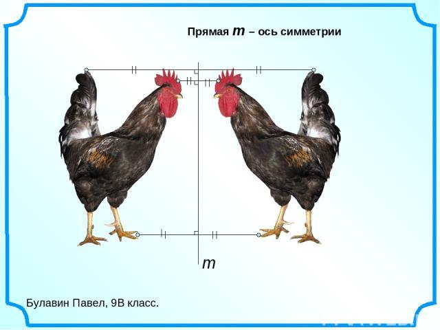 Булавин Павел, 9В класс. Прямая m – ось симметрии m