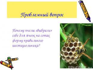 Проблемный вопрос Почему пчелы «выбрали» себе для ячеек на сотах форму правильно