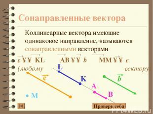 Сонаправленные вектора Коллинеарные вектора имеющие одинаковое направление, назы