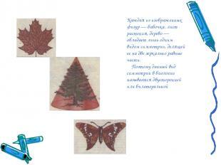Каждая из изображенных фигур — бабочка, лист растения, дерево — обладает лишь од