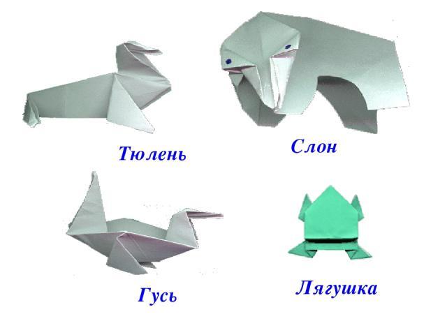 . . Тюлень Слон Гусь Лягушка