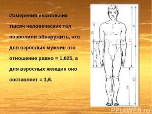 Измерения нескольких тысяч человеческих тел позволили обнаружить, что для взросл