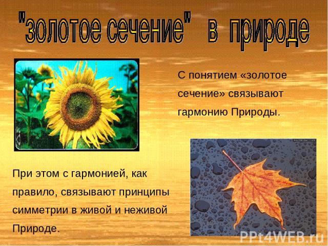 С понятием «золотое сечение» связывают гармонию Природы. При этом с гармонией, как правило, связывают принципы симметрии в живой и неживой Природе.